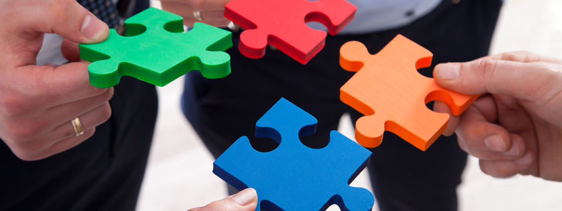 ERP special solutions - People trying to merge puzzle pieces